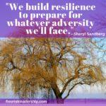 Resilience Sandberg