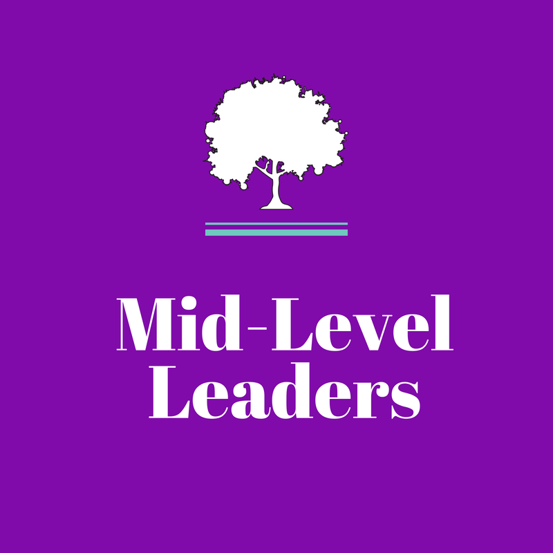 Mid-Level Leaders